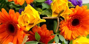 Blumen Und Karte: Frohe Pfingsten