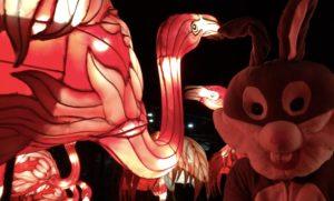 Hase und Flamingo Lichterwelten Halle Zahnarztpraxis Roger Barz