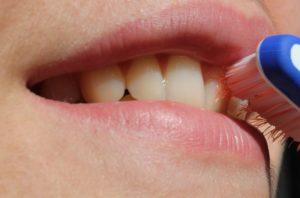 Zahnbürste im Mund Zahnarzt Roger Barz Halle
