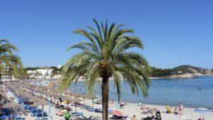 Beach Mallorca Zahnarzt Roger Barz Halle