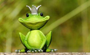 Frosch mit Krone Zahnarzt Roger Barz Halle