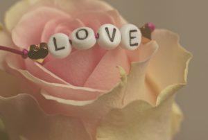 Love Zahnarzt Roger Barz Halle