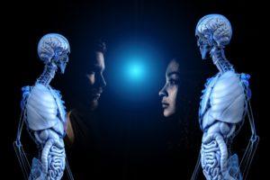 Menschlicher Körper Zahnarzt Roger Barz Halle